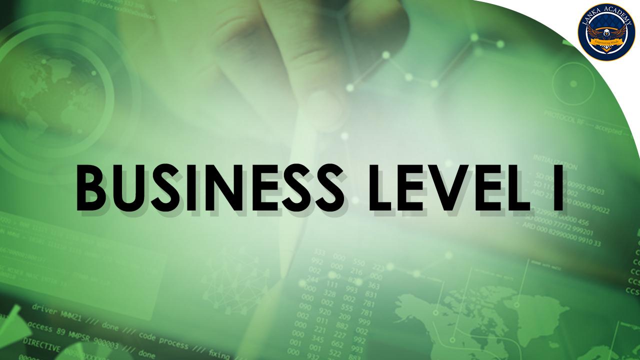 Business Level I